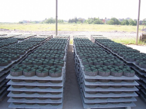 the pvc pallets for grass bricks